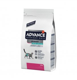 Affinity gatto advance...