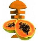Forza10 cane snack mr fruit chew papaya da 54 gr