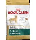 Royal canin cane breed golden retriever adult da 3 kg