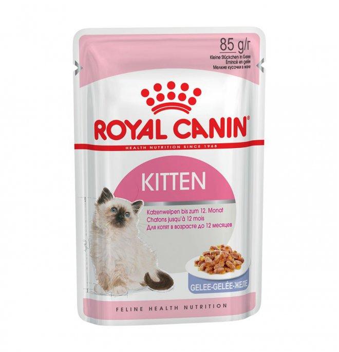 Royal canin gatto kitten jelly da 85 gr in busta