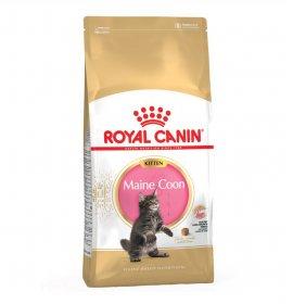 Royal canin gatto breed maine coon kitten da 2 kg