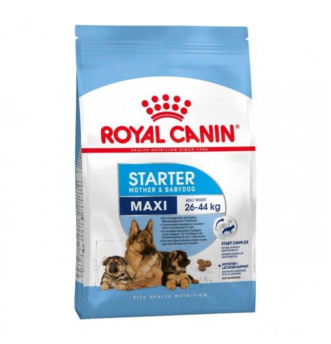 Royal canin cane starter maxi mother & baby da 15 kg