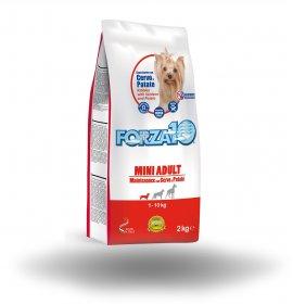 Forza10 cane adult mini...