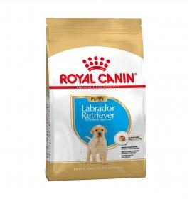 Royal canin cane breed labrador puppy da 3 kg