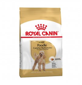 Royal canin cane breed barboncino adult da 500 gr