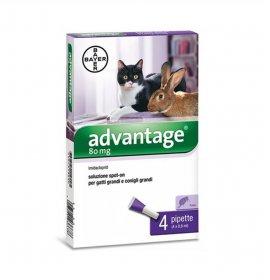 Bayer advantage spot-on 80...